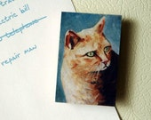 Orange Kitty Cat Kitchen Magnet