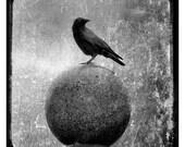 Silver Metallic Bird Ball