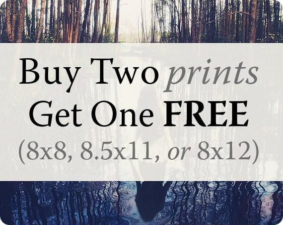 Large Prints, Buy 2 Get 1 FREE, 8x8, 8.5x11, or 8x12, BOGO