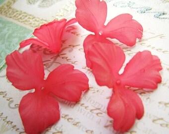 Lucite Orchid Petal Flowers in Watermelon(4Flowers) b1645