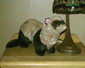 Plush sable ferret