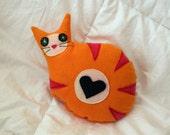 Lori the Pocket Cat
