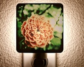 Acid Olde Tyme Rose Night Light