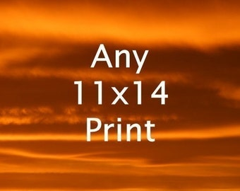 11x14 (or 12x12) Print - Your Choice of Fine Art Nature Photos - Buy Two Get One Free