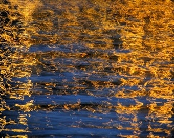 Shimmer - 8x10 Fine Art Photograph - Abstract Reflections on Water