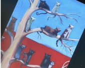 Cat Apartments - Number 13- Postcard