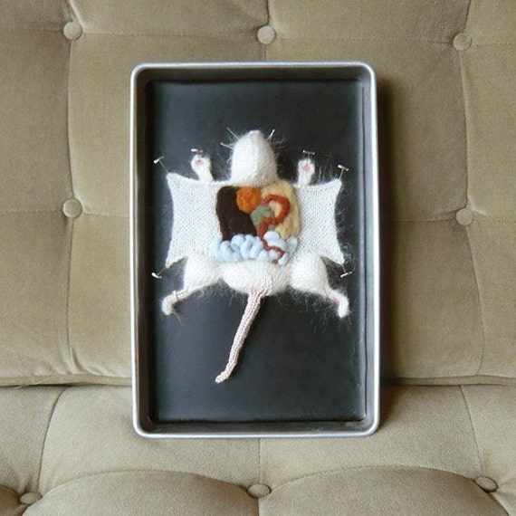 Knitted Lab Rat in an actual dissection tray