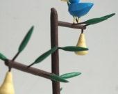 bluebird in pear tree