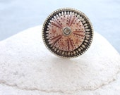 Pink Sea Urchin Ring