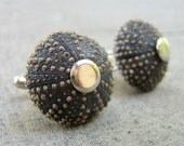 Sea Urchin Collection- Cool Brown Cufflinks
