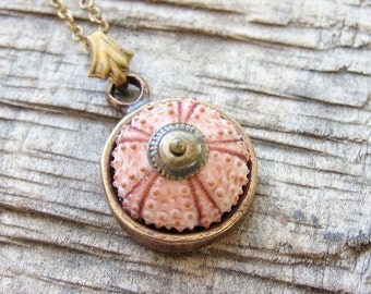 Sea Urchin Collection - Brass Pink Vintage style Necklace