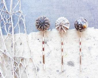 Sea Urchin Hair Pins - Three Bobby Hair Pins - Sea urchin and Shells