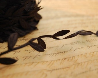 Black Ribbon of Leaves and Trailing Vine Trim
