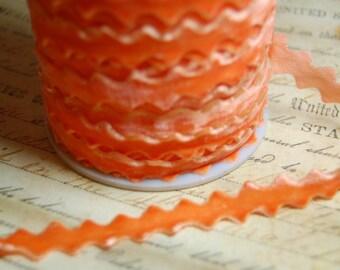 Sweet Tangerine Velvet Ric Rac