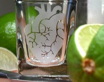 Anatomical Heart shot glass
