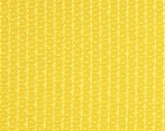"WEBBING - 2"" Strap - Yellow"