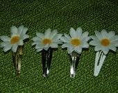 Hair Pins...Daisy..Very Cute