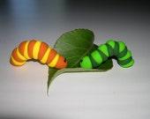 Orange Inchy Worm