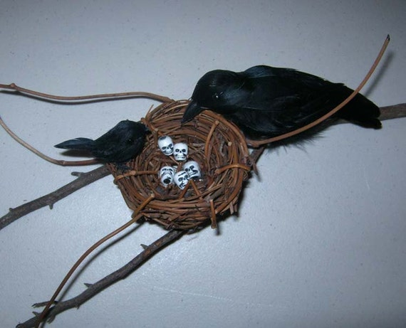 aLtErEd ArT CrOws RaVeNs NeSt WaLL DeCoR  The bAbY is HunGrY   OoAk SkuLLs