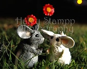 Chinchillas In Love Greeting Card