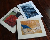 Greeting Cards - 10 Pack - Assorted
