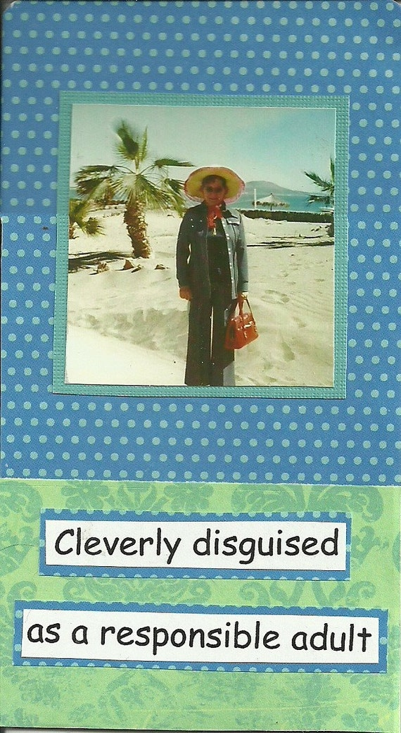 Cleverly Disguised Funny Original Mini Collage Art