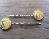Bobby Pins, hair accessories, Numbered Resin Bobby Pins