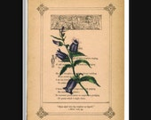 Christian Golden Rule Floral Print on Antique Book Page