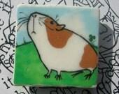 Guinea Pig -- square magnet