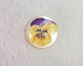 Button pansy purple yellow mother of pearl handpainted