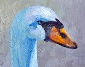 Oil Painting, Bird Portrait, Original 5x7, Blue Goose Wildlife, White Bird Animal, Swan, Wall Decor, Small Creature, Water Bird