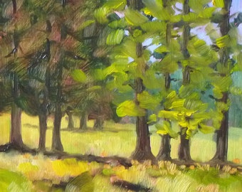 Landscape Painting, Original, Pine, Forest, Small, 6x6, Central, Oregon, Green, Gold, Yellow, Evergreen, Trees, Field