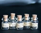 Thirteen Ravens Dollhouse Miniature Potions