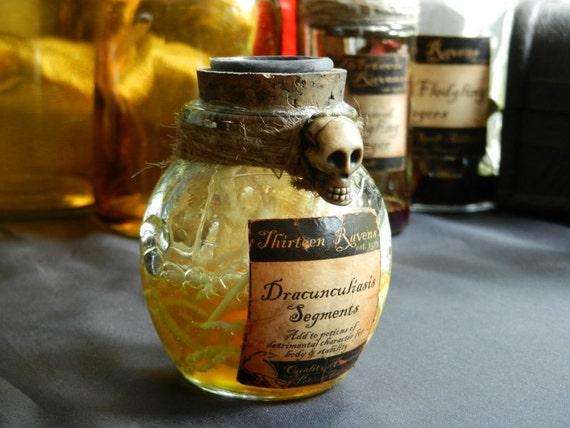 Dracunculiasis Segments - Faux Potion Bottle