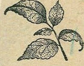 Sprig of textured leaves rubber stamp