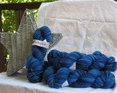 Aster Worsted Bluet