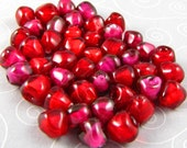 40 Pomegranate Seed Beads - Custom listing for T&J