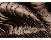 Shells print