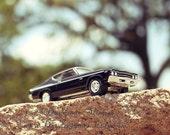Chevelle - 8 x 8 Fine Art Photograph