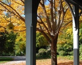 Fall Porch With Birdhouse Leaves in the Park Image Photograph Wall Art