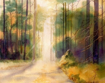My Fathers Trees and road through the forest