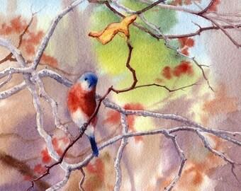 Bluebirds in the Redbud Tree