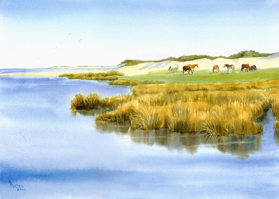 Cedar Island Horses graze the salty marsh grasses