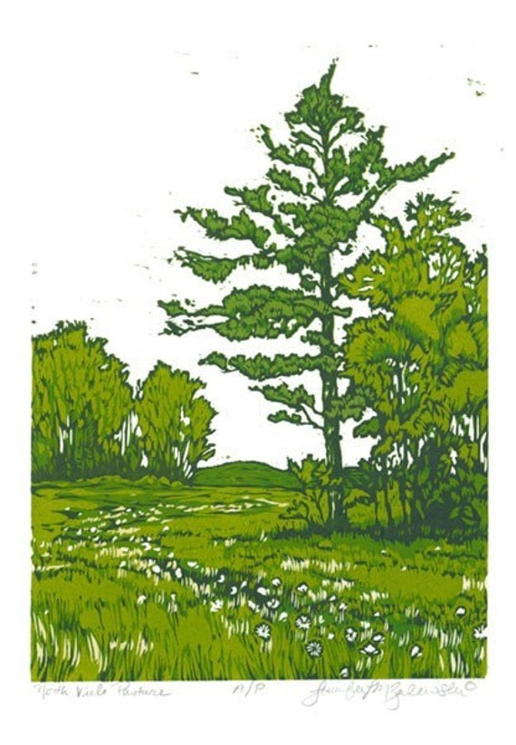 North Viele Pasture- Finger Lakes Woodcut Relief Print SALE
