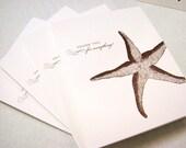Starfish 4 pack