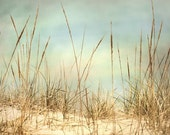 Beach Photography 11x14 SPECIAL  Home Decor Soft Blue & Earthtones, in stock - Secret Hiding Place -  LUSTRE Photo Print