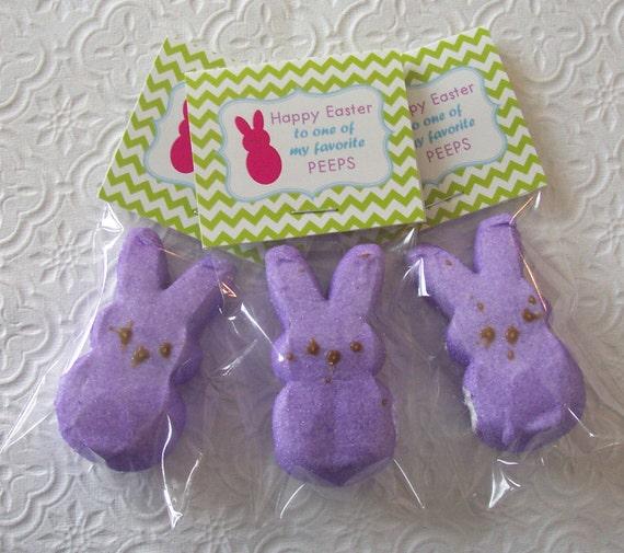 Printable Easter Bunny Peep Mini Bag Toppers