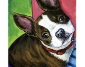 """Boston Terrier Dog Art Print of Original Painting by Dottie Dracos """"Boston Looking Up on Bright"""""""