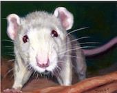 Rat Animal Art Print of Original Painting by Dottie Dracos, Little White Rat, Various Sizes