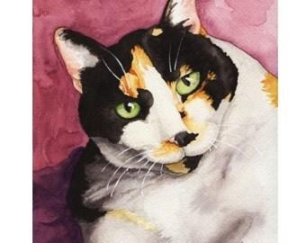 Calico cat mannerisms
